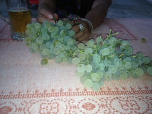 Fresh grapes clipped off the vines hanging over our heads. Perfect appetizer while we wait for our food.