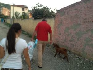 This is a resident of Milot, with his pet goat.